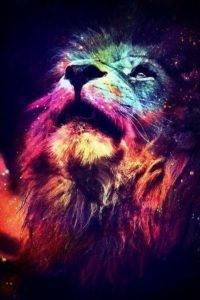 aslan_874074